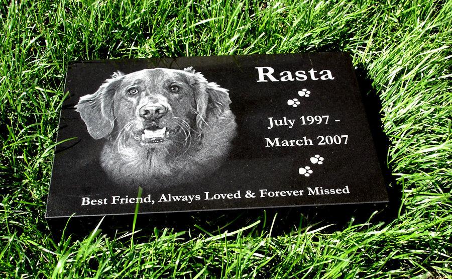 pet-memorial-dog